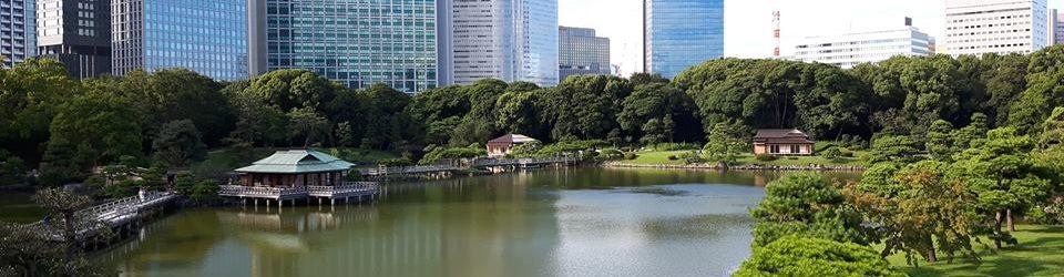 Viaggi organizzati in Giappone images
