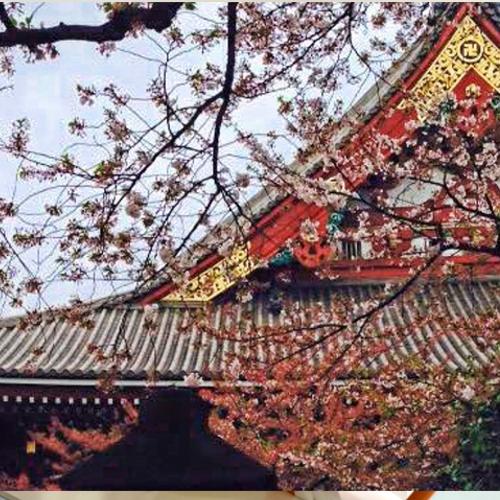 tour-giappone-zen-estate-2019